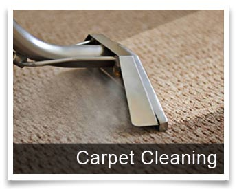 Professional Carpet Cleaning In North Atlanta A Plus Service
