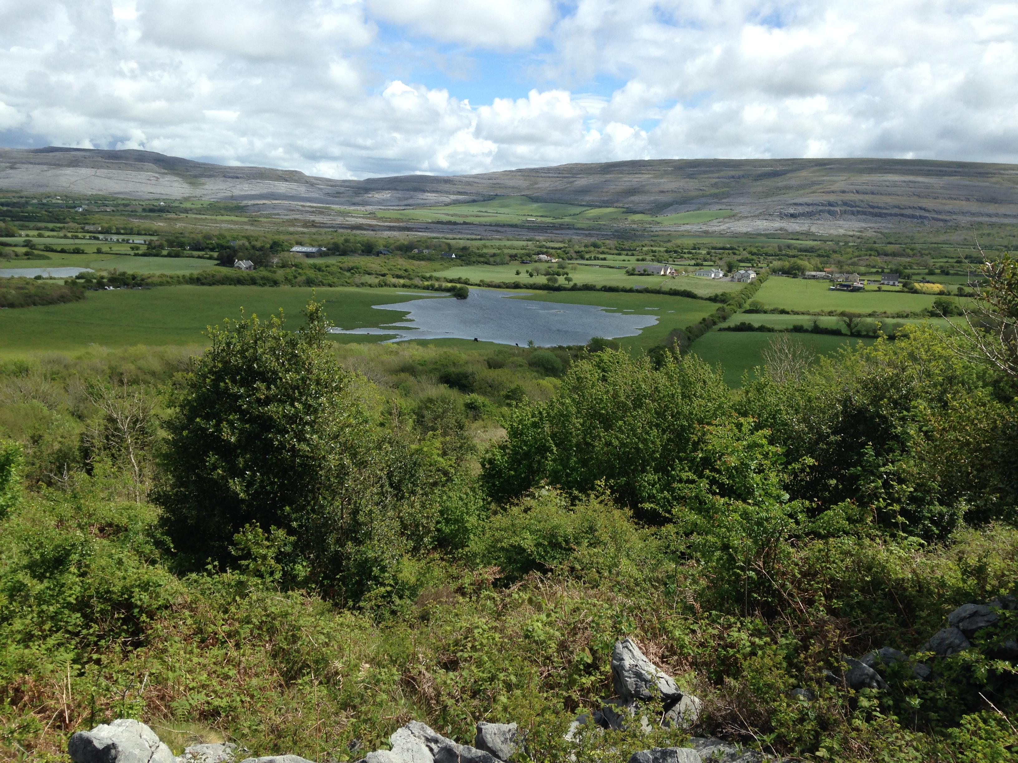 Ballyvaughn Hillside: Ballyvaugn, Ireland