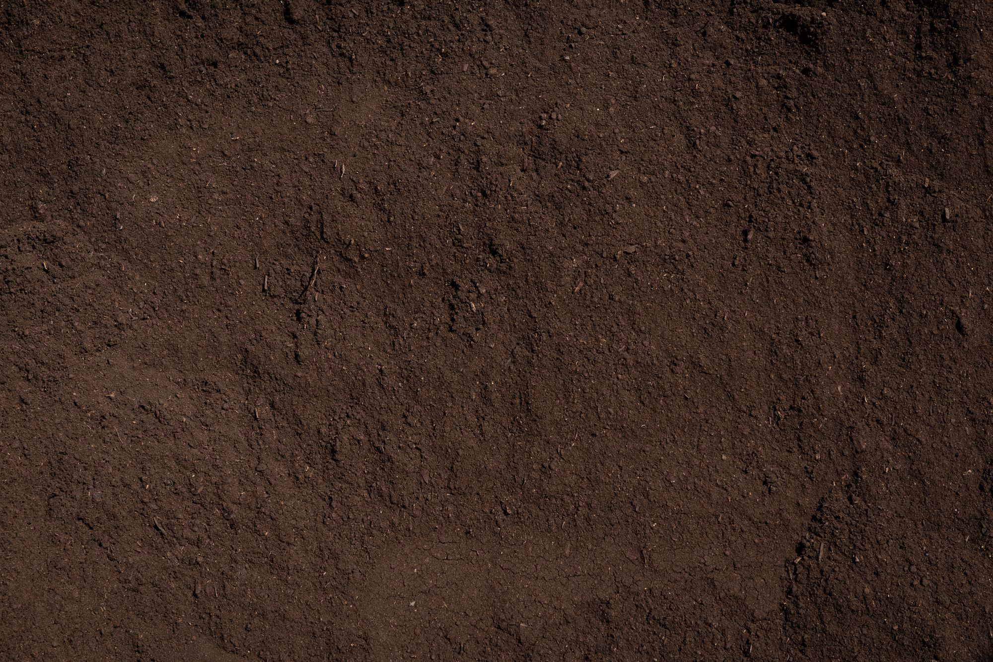 Terre et semences