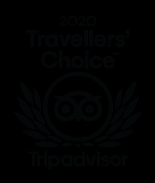 Logo for 2020 Trip Advisor Traveler's Choice Award