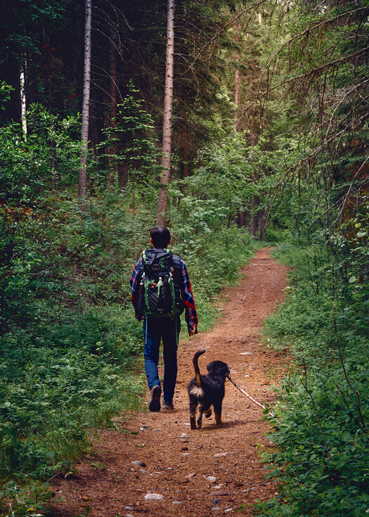 Hiker (Luca Li) walking through east kootenays forest with black dog