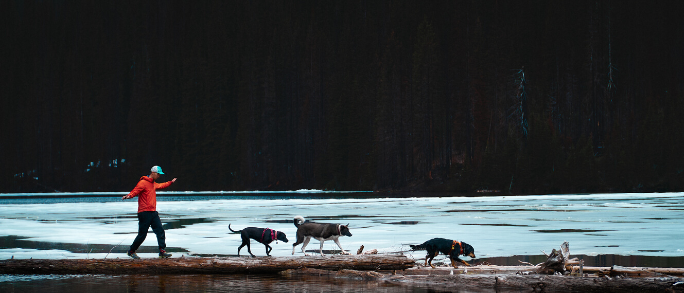 hiker in orange jacket crossing a log with 3 dogs with ice in the background Sony A6600 by Luca Li