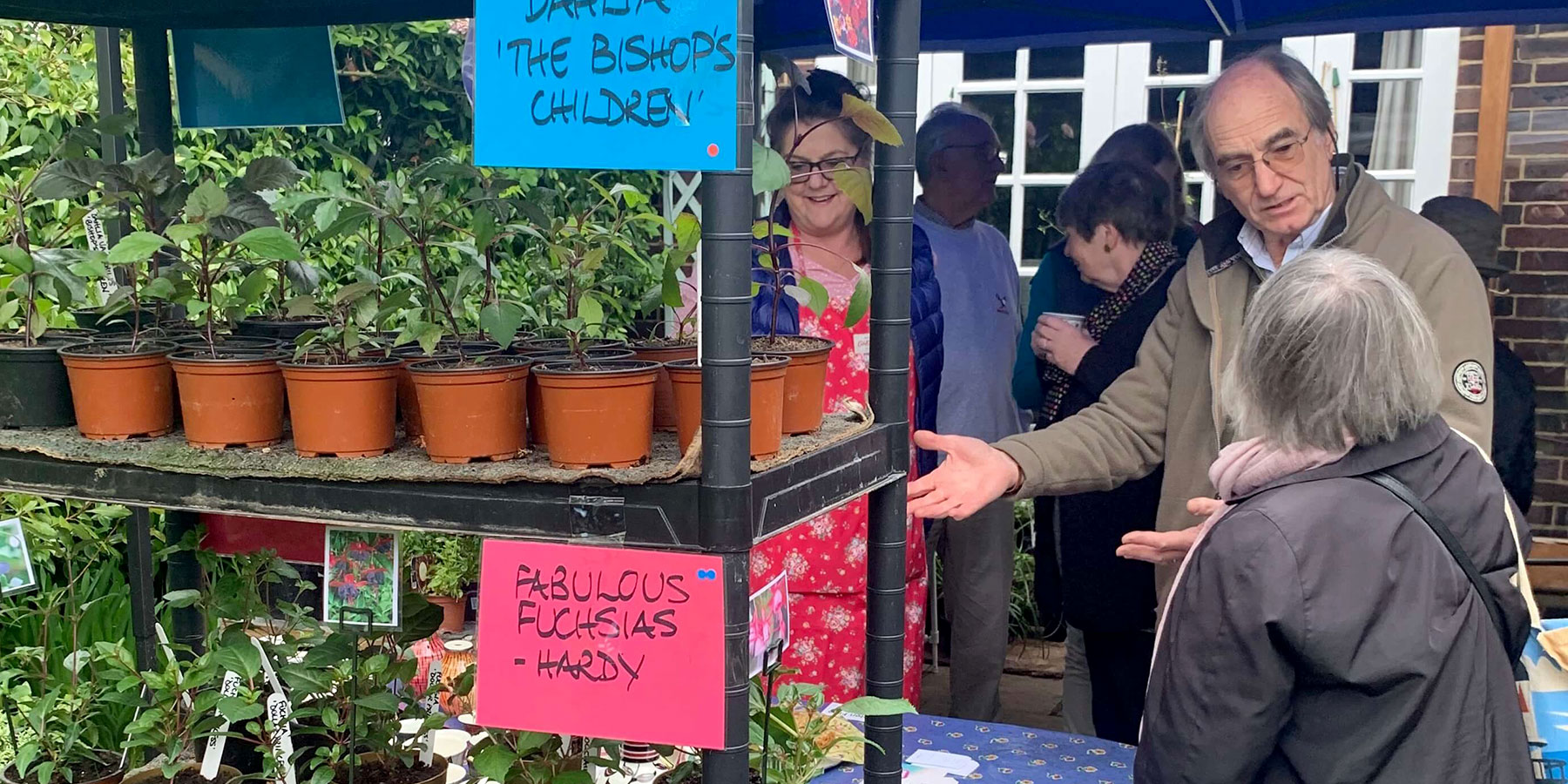 Brain Research UK Charity plant sale