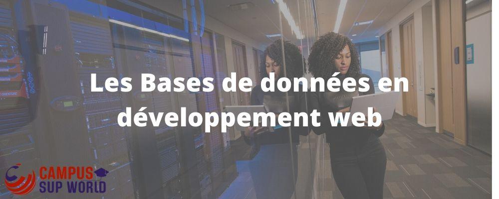 Les Bases de données en développement web