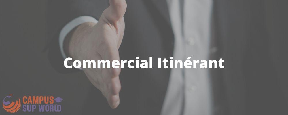 Le Métier de Commercial Itinérant