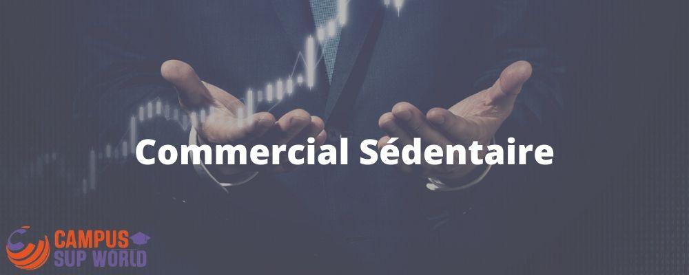 Le Métier de Commercial Sédentaire