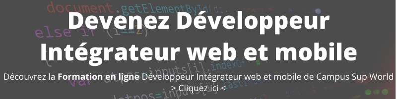 formation developpeur web et mobile