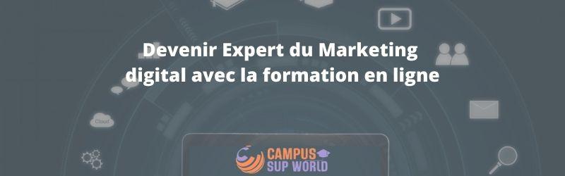 Devenir Expert du Marketing digital avec la formation en ligne
