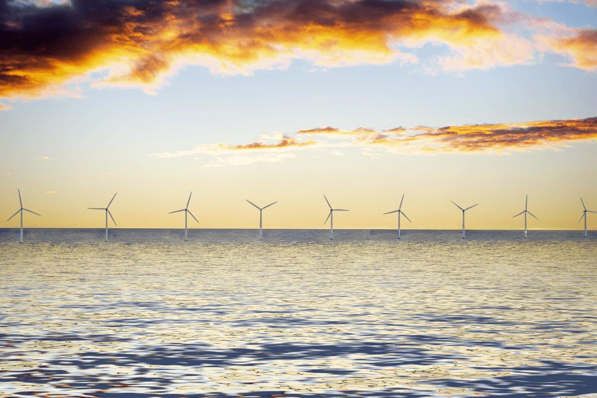 ESG Spotlight: Private and Public Interests Align in Renewables