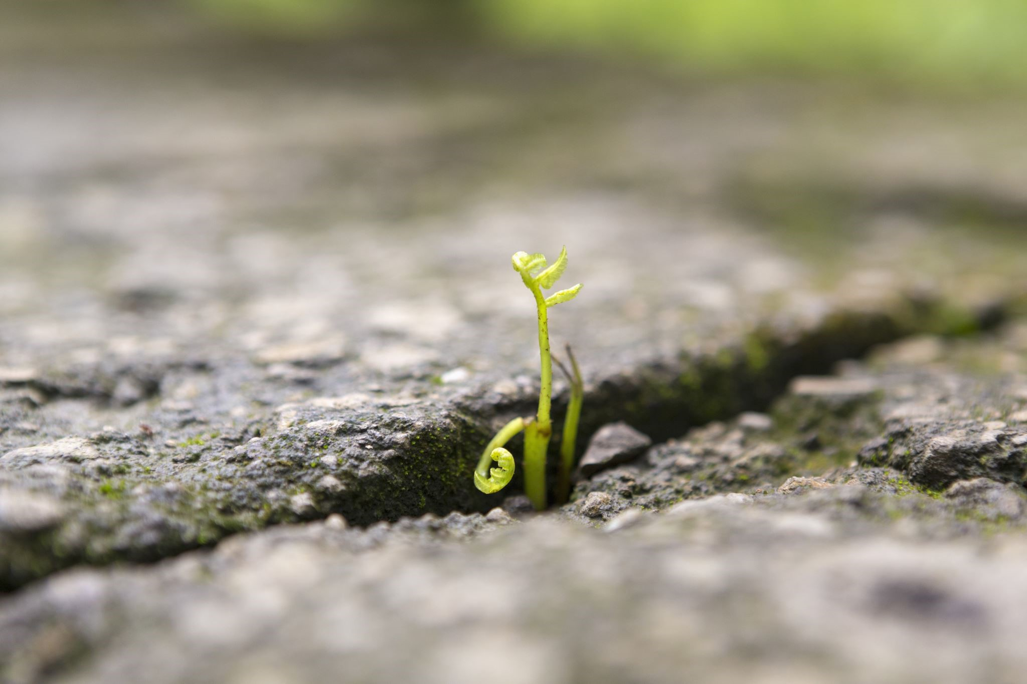 building a more resilient business in a time of uncertainty