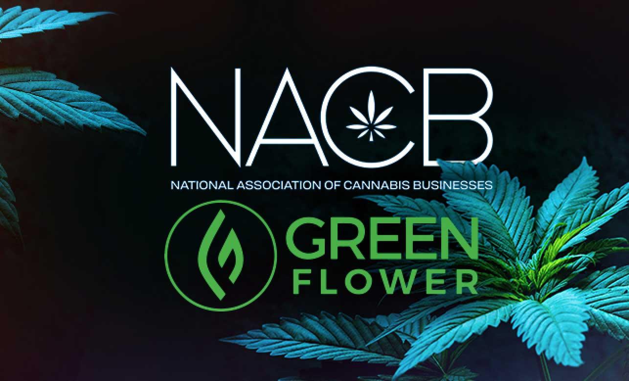 nacb cannabis education perks green flower media