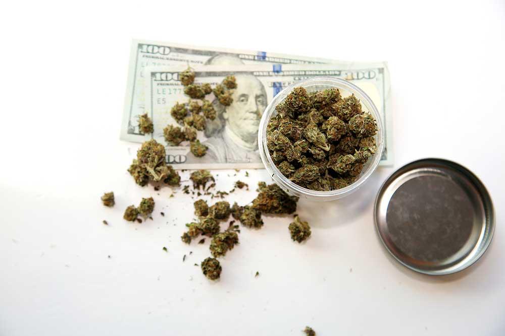 nacb cannabis association memeber discount program botanico
