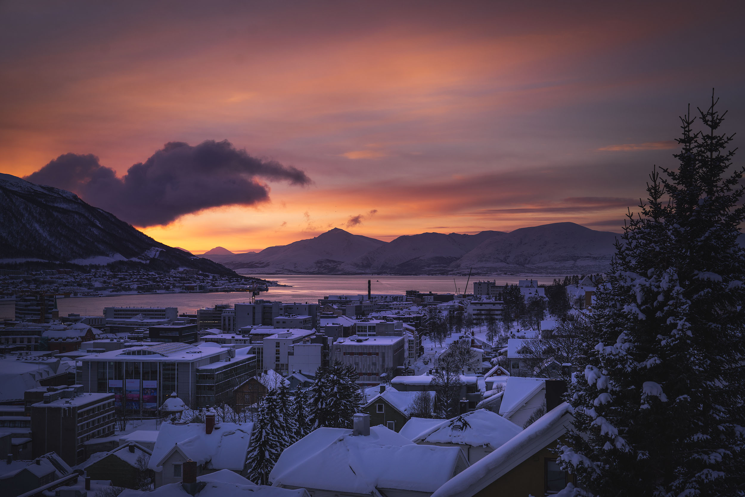 Rosa himmel over Tromsø og Kongsparken