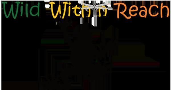 Wild Within Reach