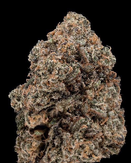Gelato weed nug