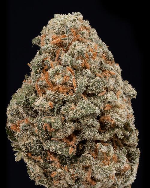 Green Crack weed nug