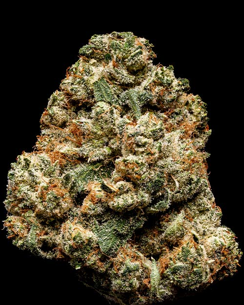 Orange Tree weed nug
