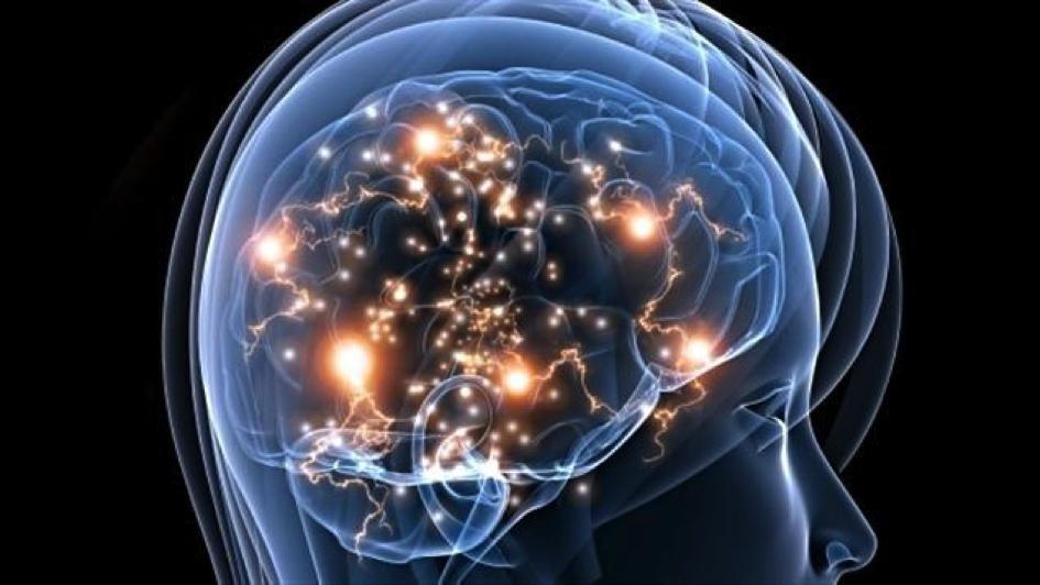 Les trois cerveaux du facilitateur graphique