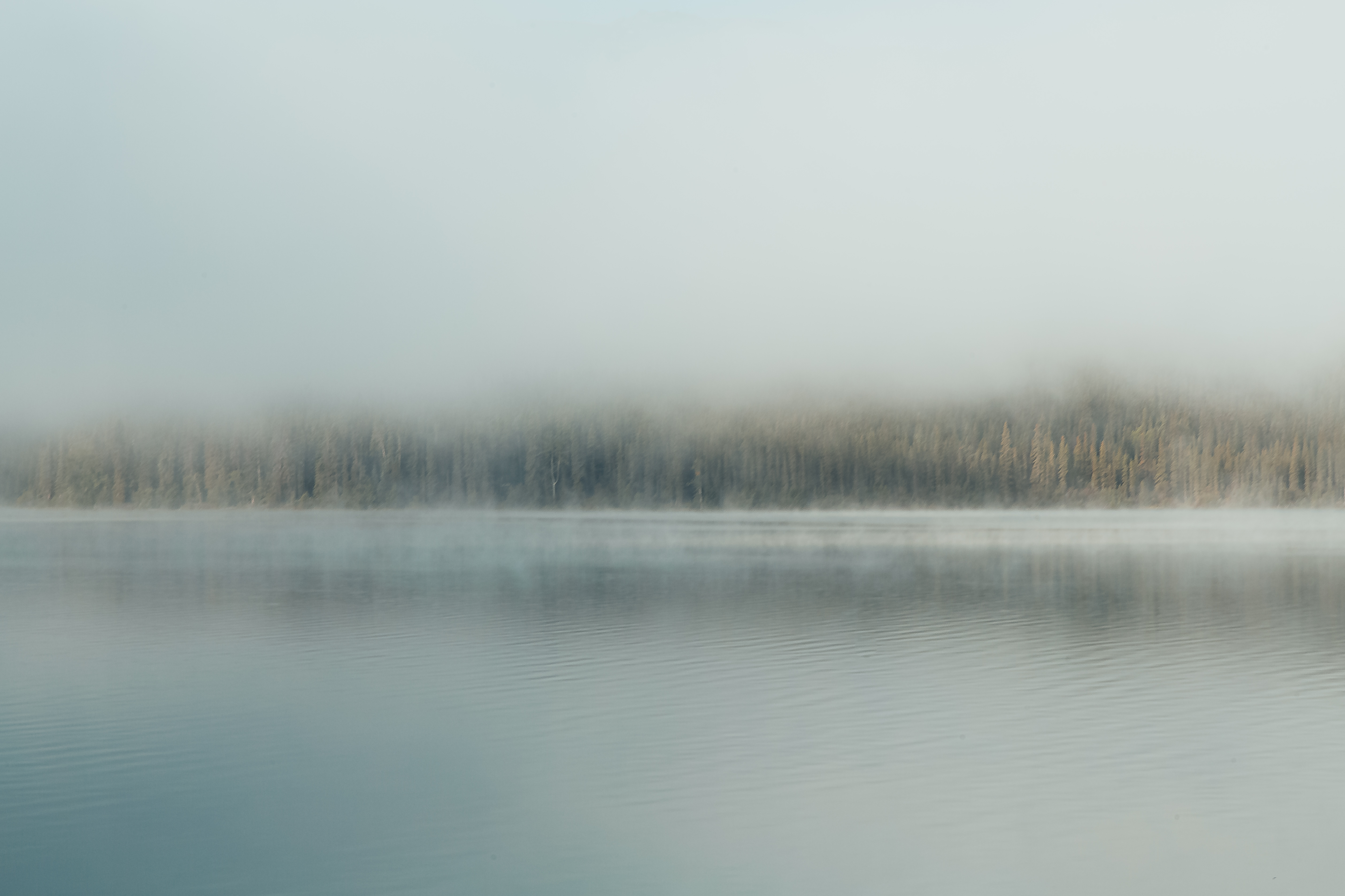 A misty landscape photo of a lake in BC in the morning