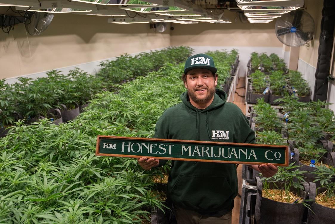 Growing an eco-friendly cannabis business CBD Honest Marijuana Company