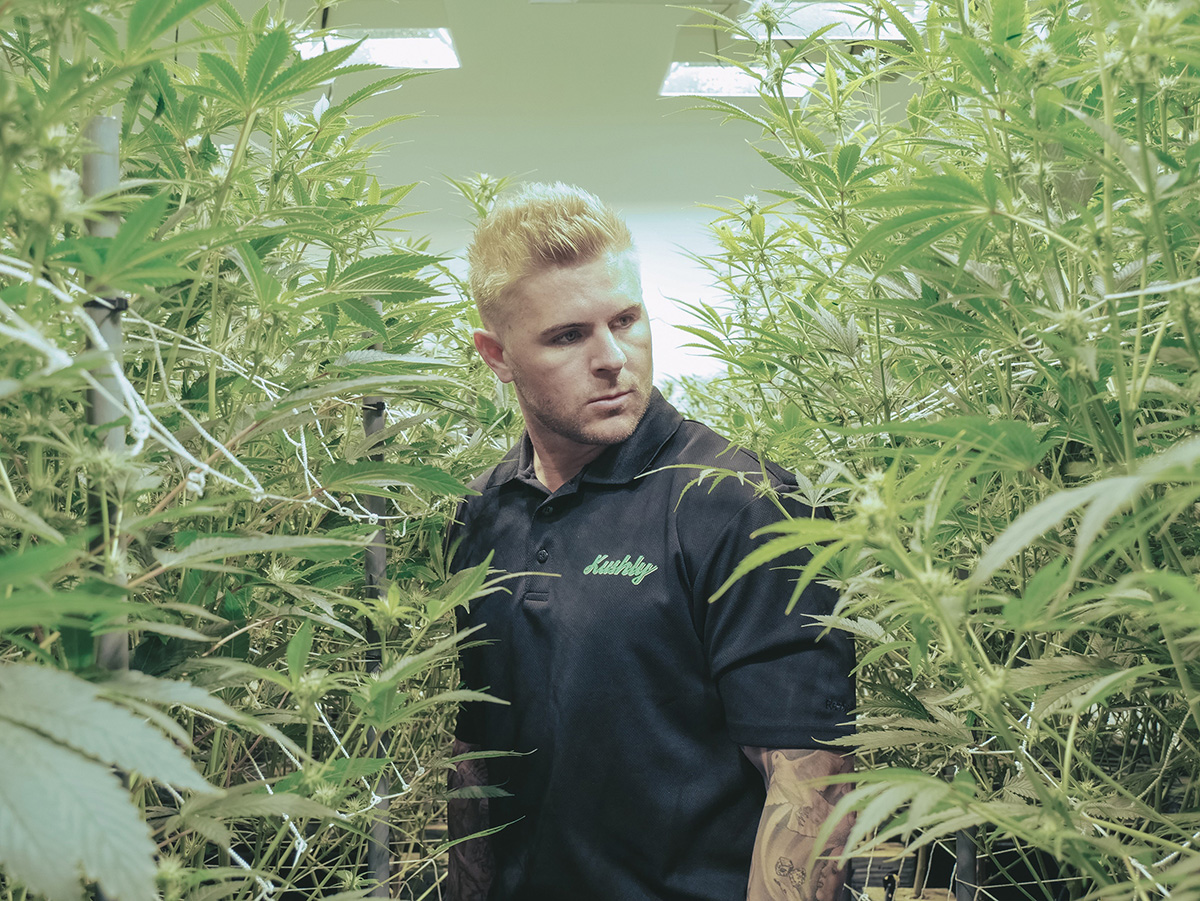 Growing a cannabis business CBD  Kushly