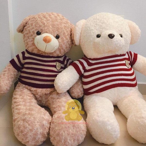 Gấu teddy 1m4 heads và tales