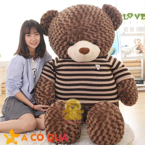 Gấu teddy 1m4 áo len