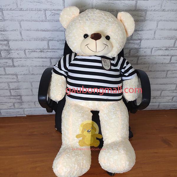 Gấu teddy 1m4 logo baby