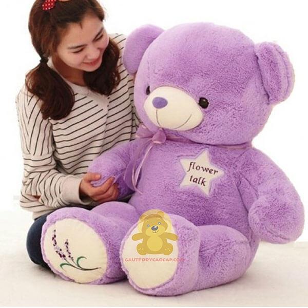 Gấu teddy 1m4 chấm chân