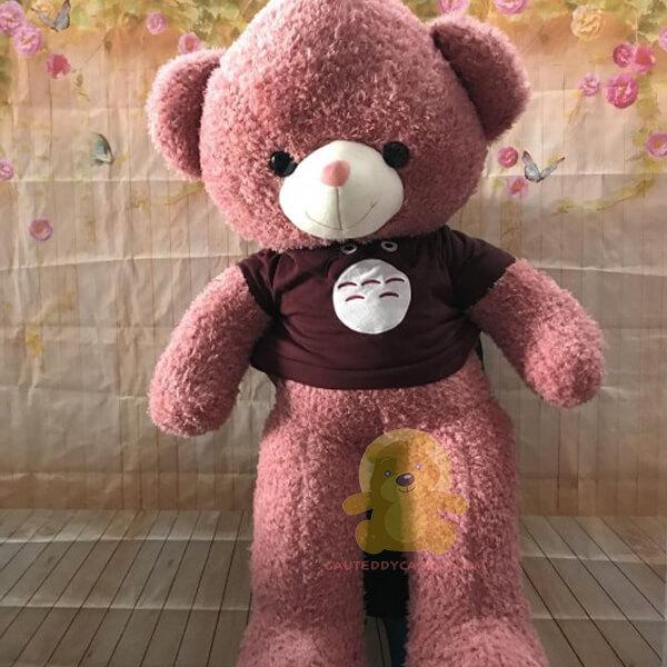 Gấu teddy 1m áo thần rừng toroto