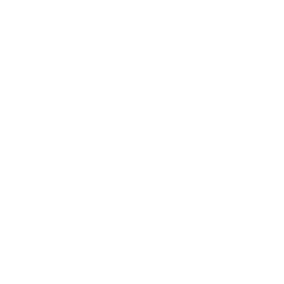 The American Hotel Logo