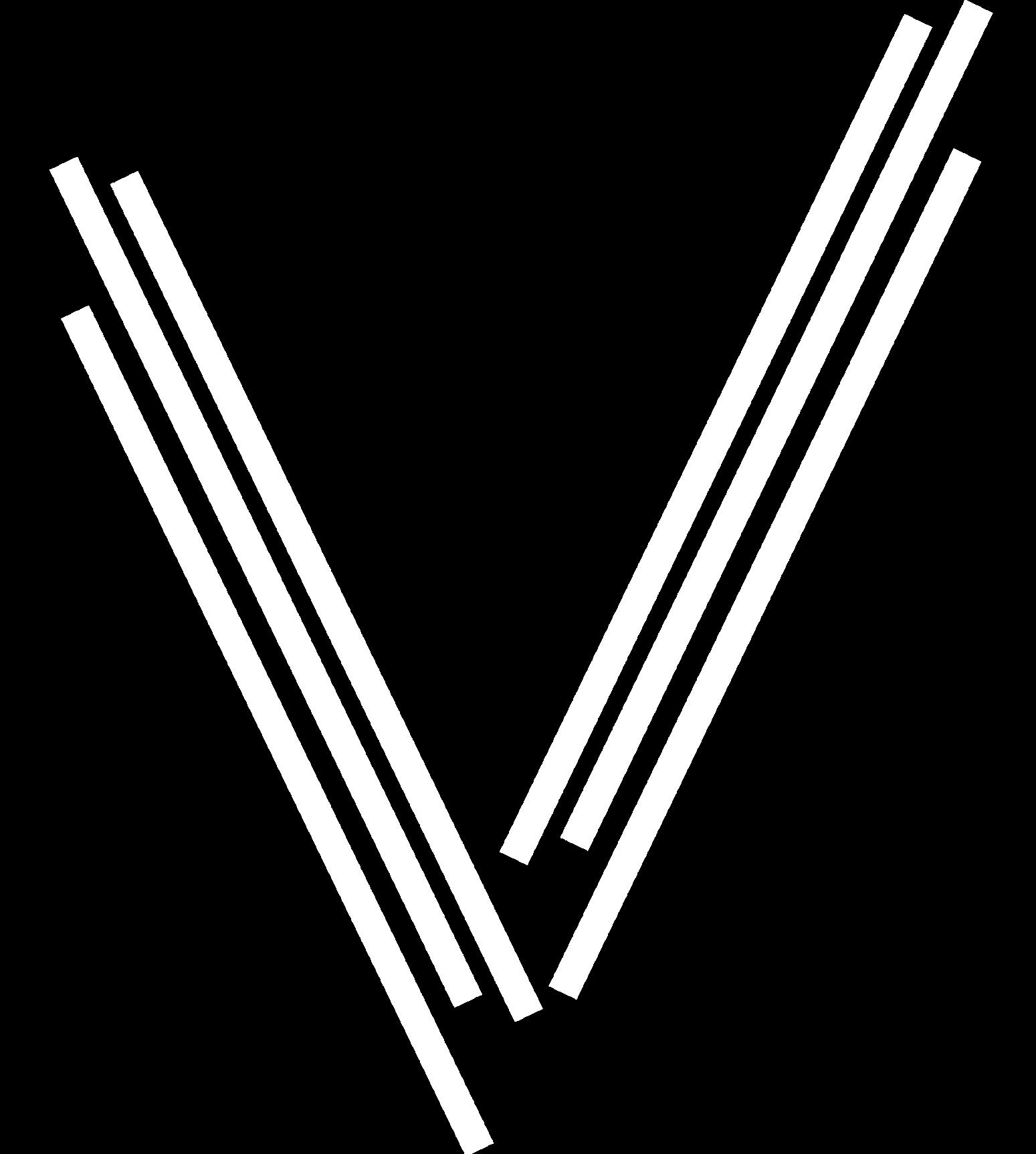 vizionators-white-logo