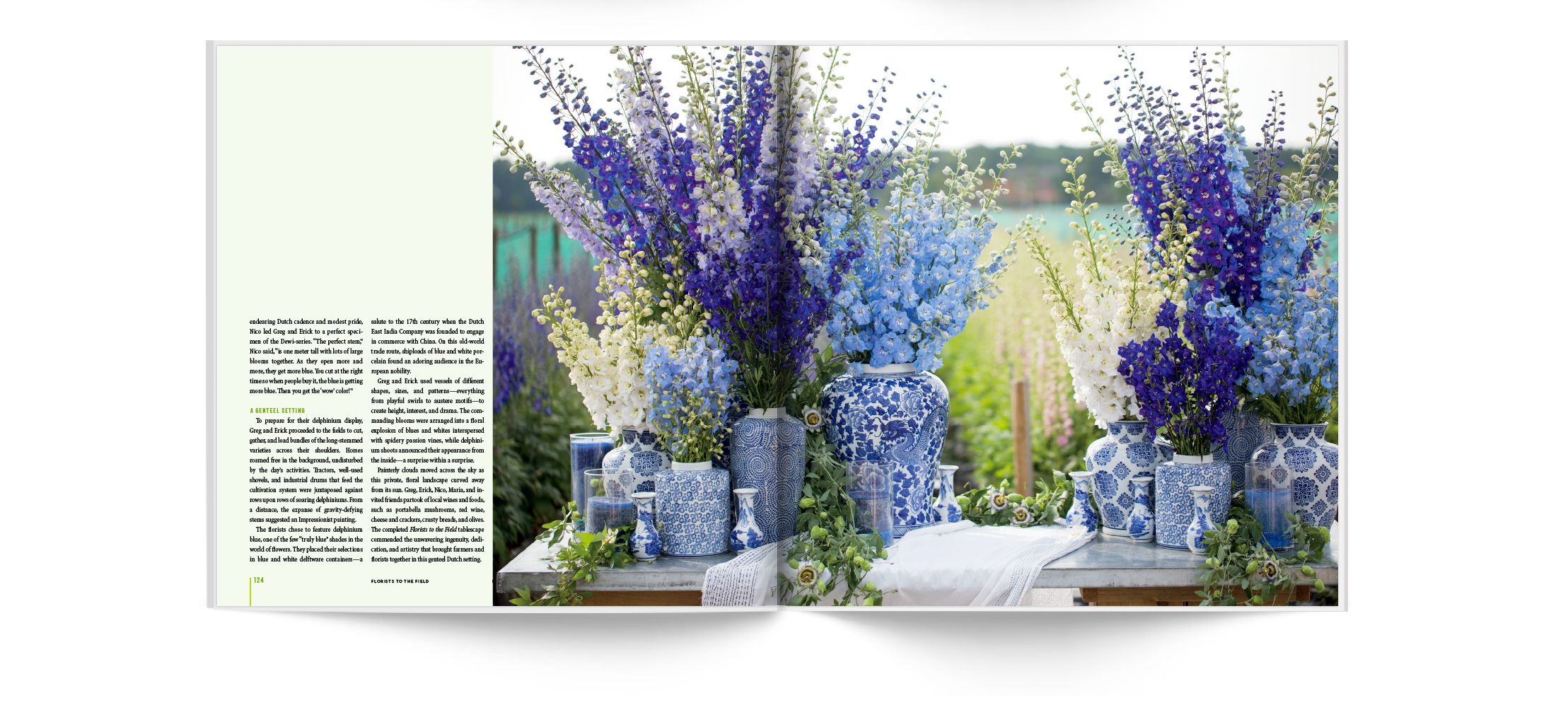 Southerly Media Book Design Garden District | © Robertson Design
