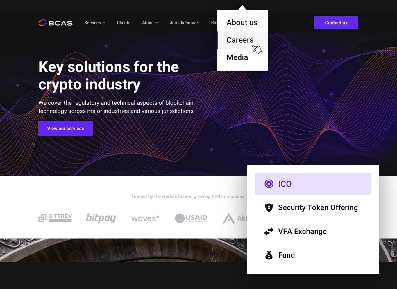 BCAS website design and functionalities