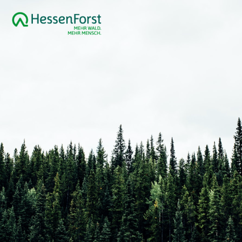 Hessen Forst Case Study