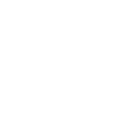 Service disabled veteran owned small business logo