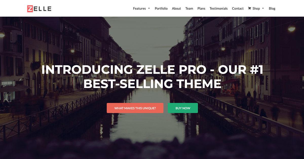 Zelle Pro (Zerif Pro)