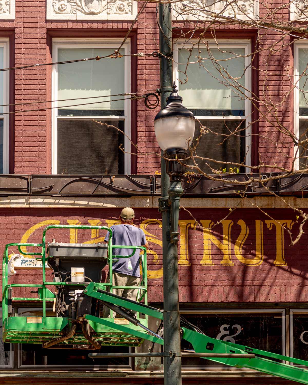 Chestnut facade painting