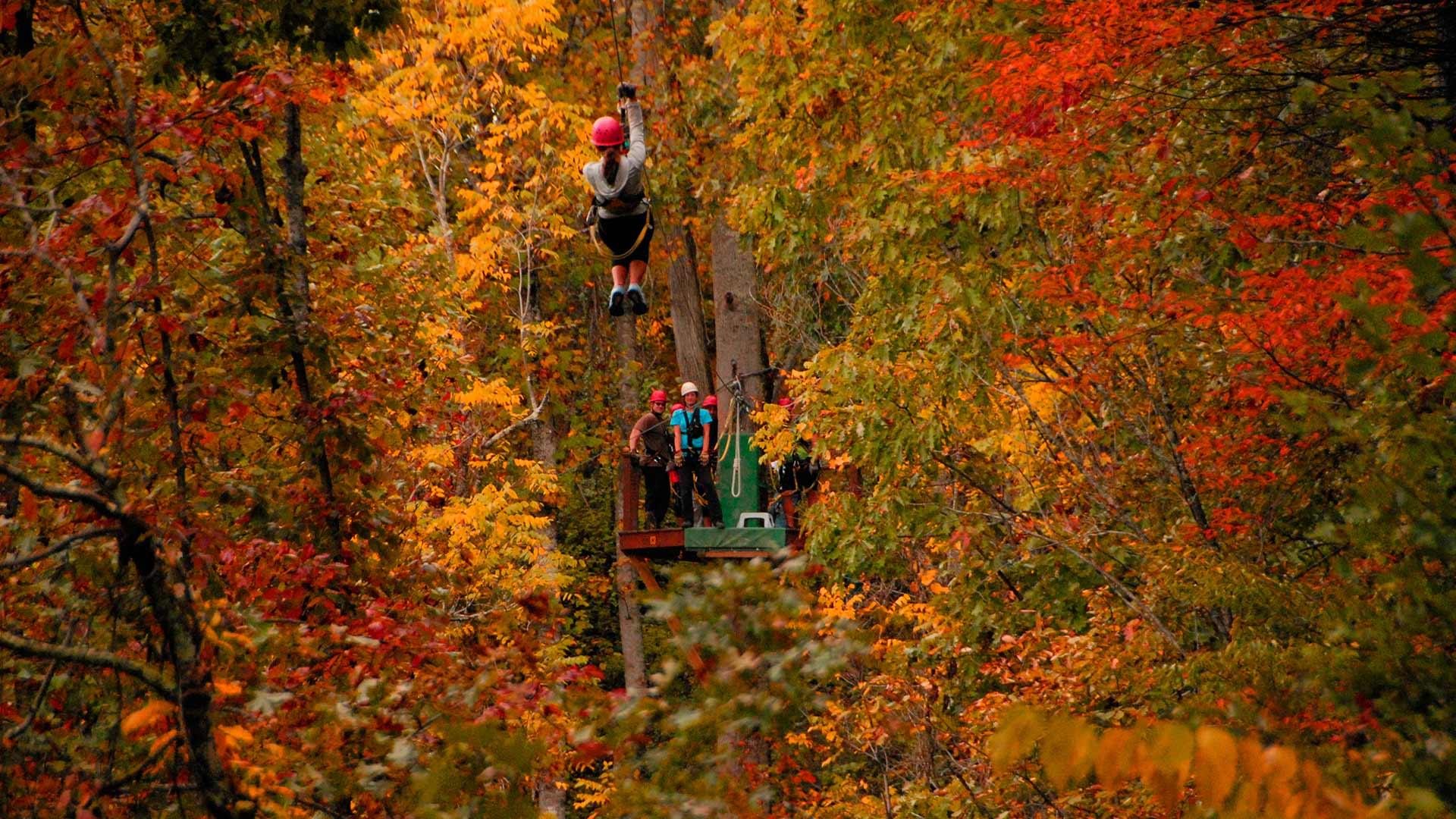 French Broad Adventures fall ziplining