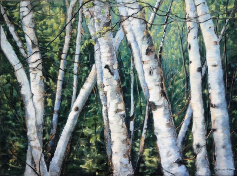 Woodland Birch