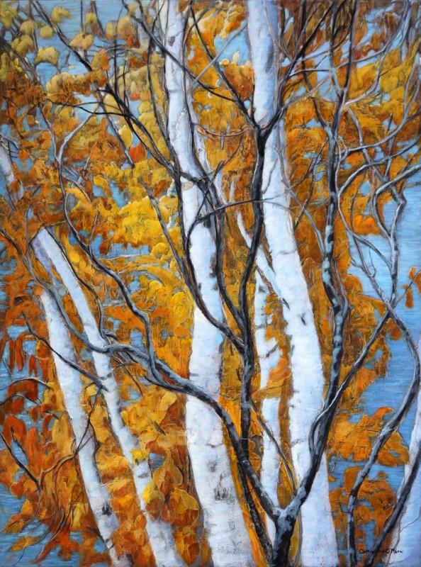 Ten Mile Bay Birch
