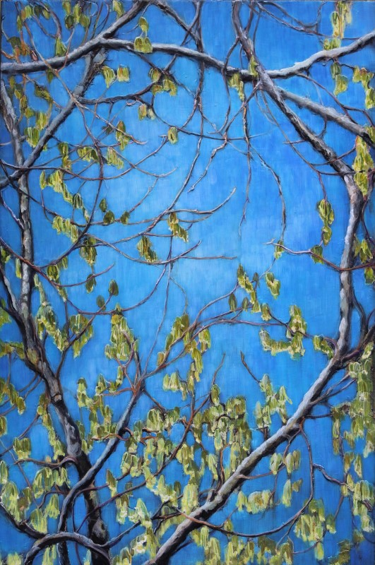 Spring green, Muskoka blue