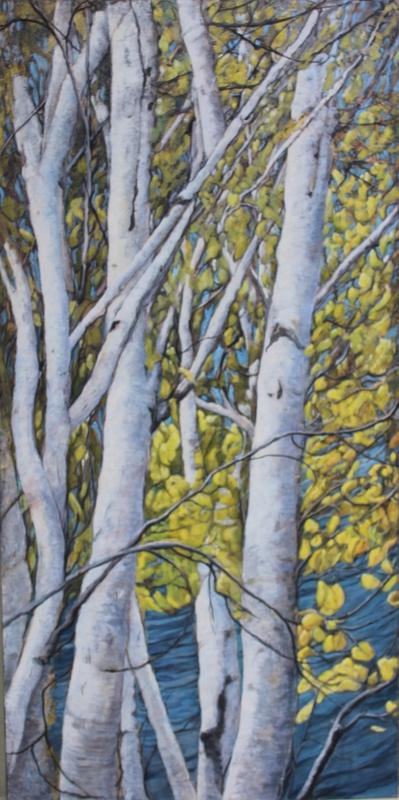 Summer Birch 36 x 60