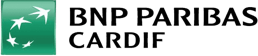 Hyperon was implemented in BNP Paribas Cardif