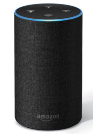 The Amazon Alexa uses Natural Language Processing, also known as NLP, to interpret and understand your responses.