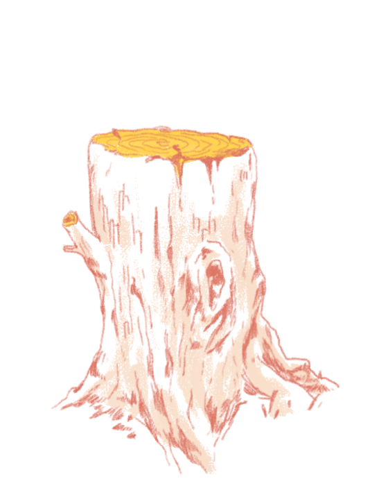 A tree stump
