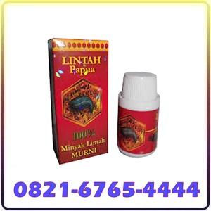 Jual Lintah Oil Asli Papua Di Batam