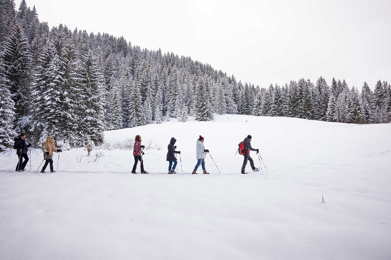 Group of snowshoe hikers crossing a powder field in the middle of the forest