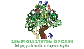 Link to Seminole System of Care