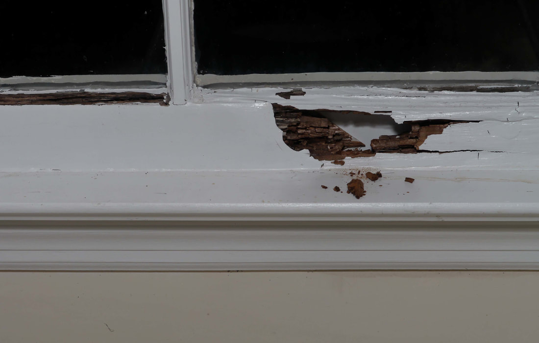Rotted Window Frames Flipping Houses